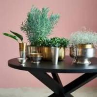 Cuencos y platos decorativos