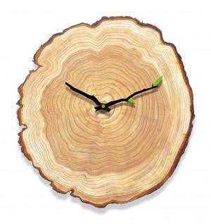 Grano de madera reloj de pared sala de estar dormitorio reloj mudo tablas de madera moderno minimalista casa anillo anual relojes europeos